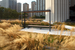 Nathan Phillips Square | Gardens | Hoerr Schaudt Landscape Architects