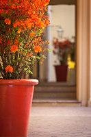 Isolani Palace | Manufacturer references | Domani