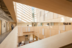 Tozzer Anthropology Building | Museums | Kennedy & Violich Architecture