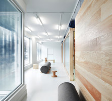 Common Good | Oficinas | MSDS Studio