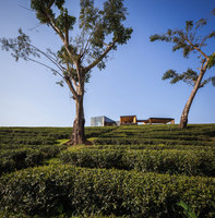 Choui Fong Tea Cafe | Ristoranti | IDIN ARCHITECTS