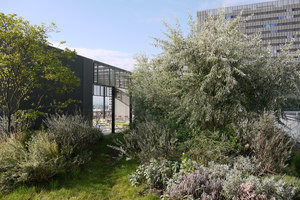 Campus Toni Areal | Gardens | Studio Vulkan Landschaftsarchitektur
