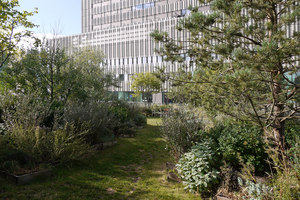 Campus Toni Areal   Gardens   Studio Vulkan Landschaftsarchitektur