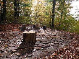 Wildwood Plaza | Parchi | Studio Vulkan Landschaftsarchitektur