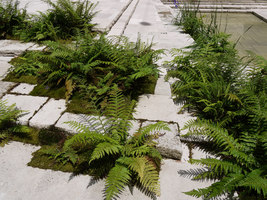 Europaallee 21   Public squares   Studio Vulkan Landschaftsarchitektur