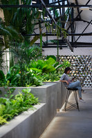Jungle Station | Oficinas | G8A Architecture & Urban Planning