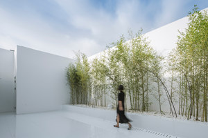 Bamboo Forest on the Roof | Club interiors | Hu Quanchun