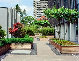 ETH Zurich | Gardens | Enea