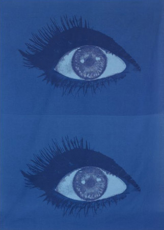 Eyes fabric from the Anatomie collection de Wright