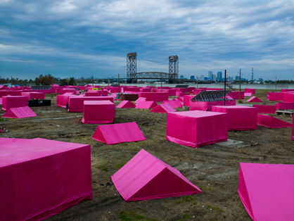 The Pink Project | News
