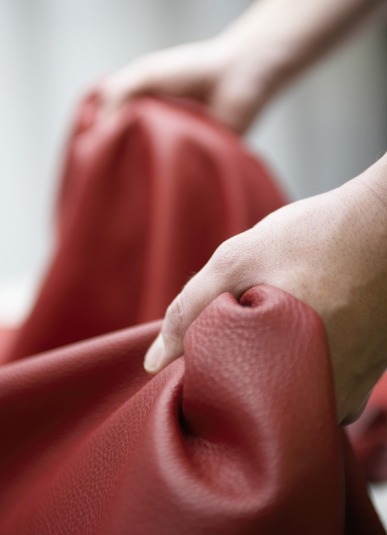 50 Shades of Leather: Elmo   News