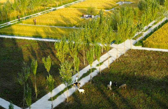 48th IFLA World Landscape Architecture Congress 2011 | News