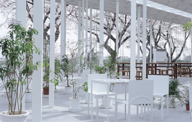 Picnic, plants, architecture - the fascinating world of Junya Ishigami | Novedades