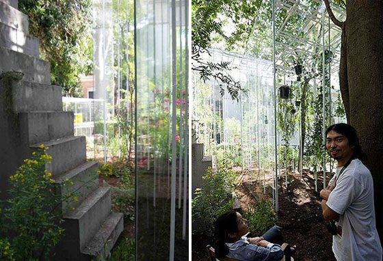 Picnic Plants Architecture The Fascinating World Of