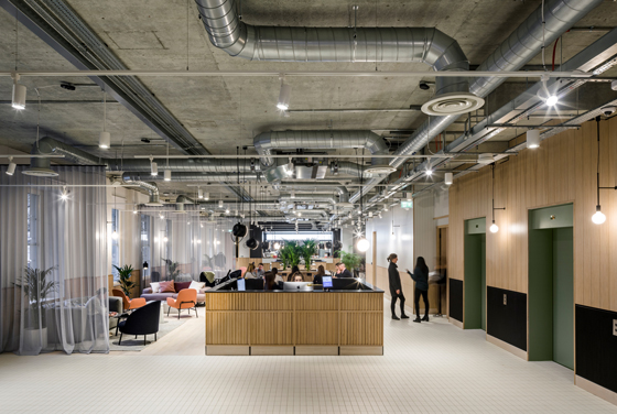 Close encounters: co-working spaces make contact | News