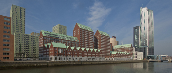 The Paradox of Rotterdam | Design