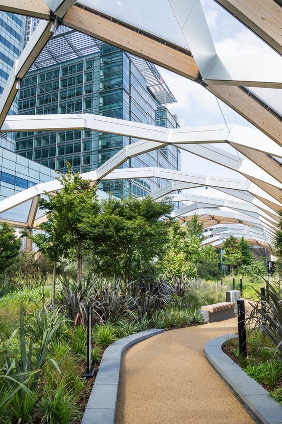 Natural Highs: Arup's architecture in wood   News