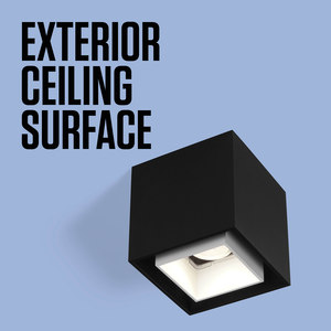 EXTERIOR CEILING SURFACE
