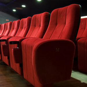 MULTIPLEX & CINEMA SEATING