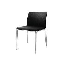 Ceno – 361 range