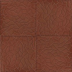 40634_200 Special edition cement tiles