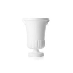 container vase