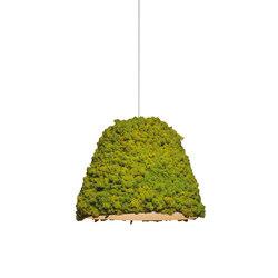 Moss Hanging lamp