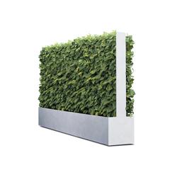 Grüne Wand®