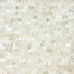 White Rivershell Field Tile
