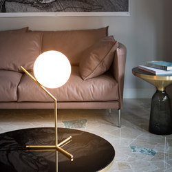 IC Light