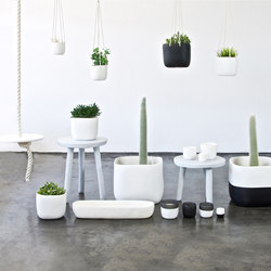 One Color Planter