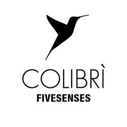 DV300 - Colibri'-Fivesenses