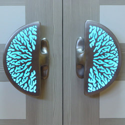 Coral Illuminated Handles