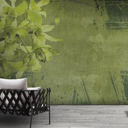 canvas | evergreen