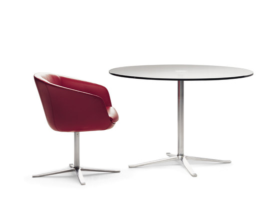 Bob dining chair by Walter Knoll