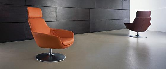 Oscar 220 armchair by Walter Knoll