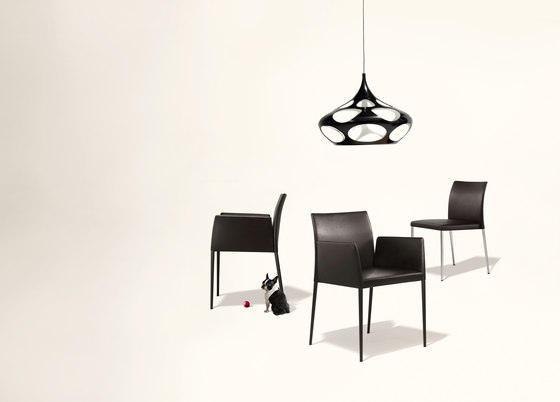 Deen chair with armrests di Walter Knoll