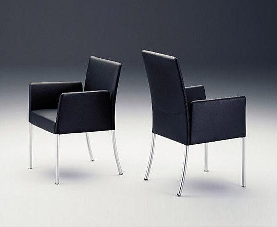 jason von walter knoll stuhl freischwinger stuhl. Black Bedroom Furniture Sets. Home Design Ideas