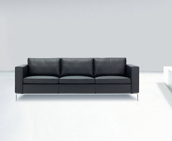 Foster 503 sofa by Walter Knoll