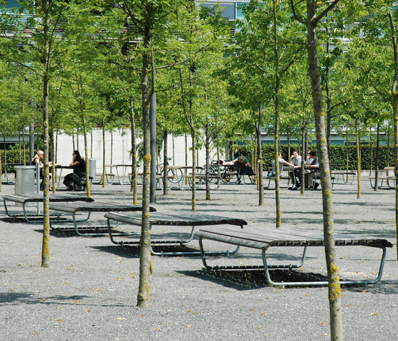 Landi Bench for Senior Citizens in NATWOOD by BURRI