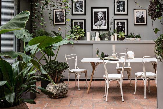 Loos Café Museum von WIENER GTV DESIGN