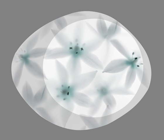 Wagashi by Foscarini