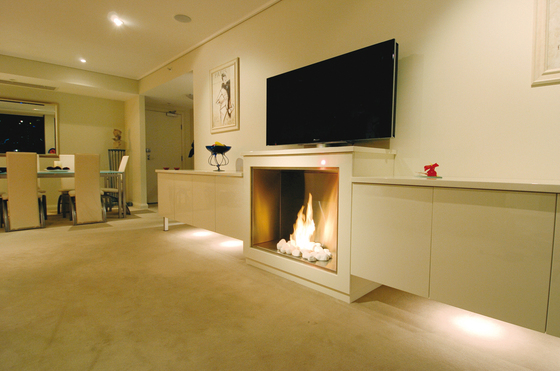 Firebox 900SS by EcoSmart™ Fire