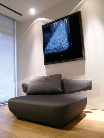 Levitt armchair by viccarbe
