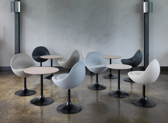 Venus Chair di Johanson