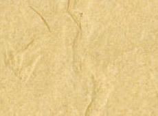 KP 1555 by Kamism