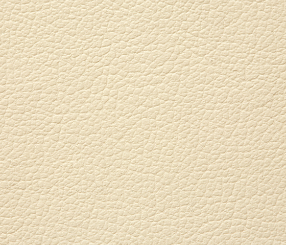 Regent 0020 PU leather by BUVETEX INT.