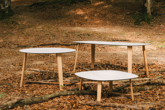 Lottus table by ENEA