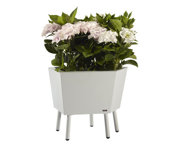 Elevation Planter di FLORA