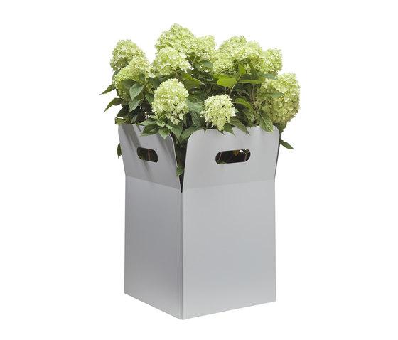 Box de FLORA